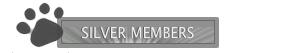 special members